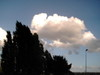 2006_sahurs_nuage_arbres_noirs