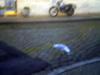 2007_dieppe_brouillard_matin_18