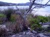 2007_corsica_porto_vecchio_54