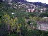 2007_corsica_porto_vecchio_60