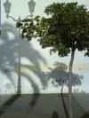 2007_corsica_ajaccio_19
