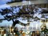2007_villerville_htel_vranda_reflet_pin_