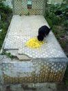 2008_maroc_rabat_13