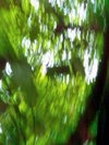2008_rouen_fort_verte_16