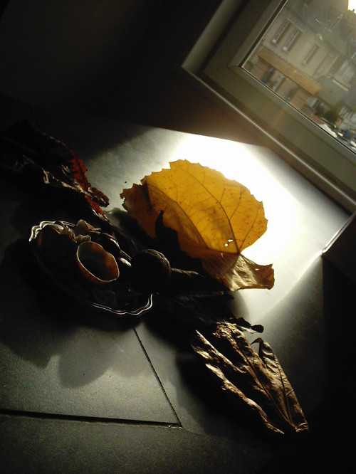 2005_bernay_appart_comptoir_nature_morte